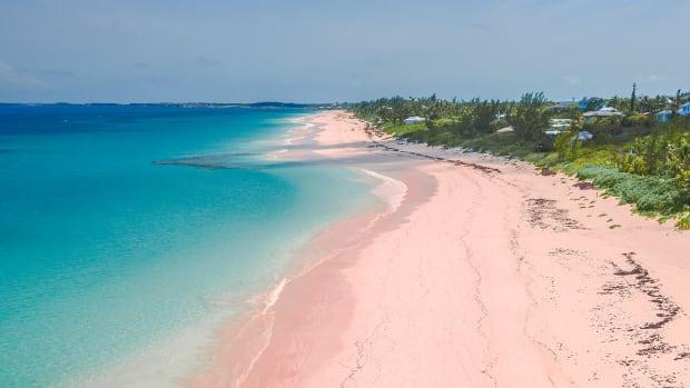 bahamas lead