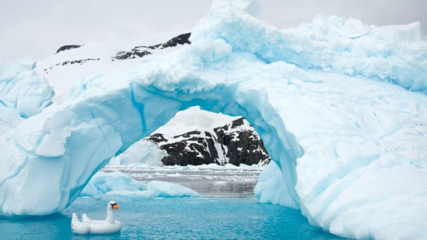 antarctica-photos-8.jpg