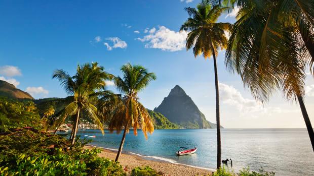 pitons-beach-palm-trees.jpg