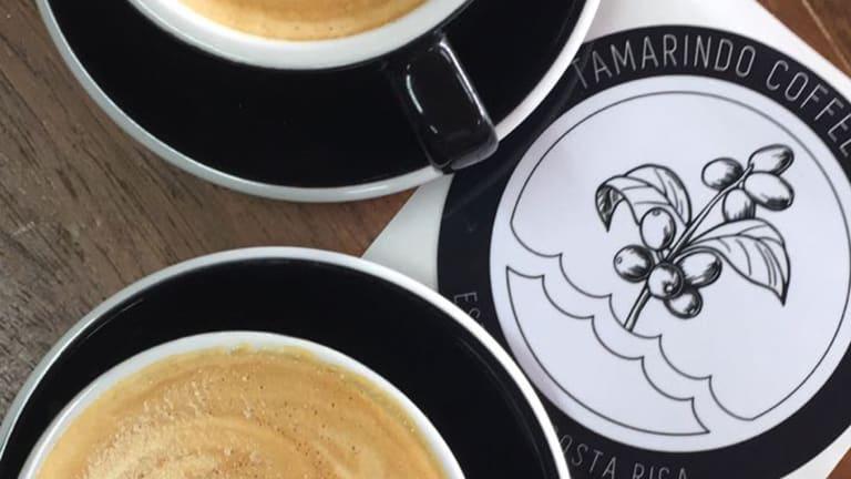 Sip a Cup of Joe at Tamarindo Coffee Roasters