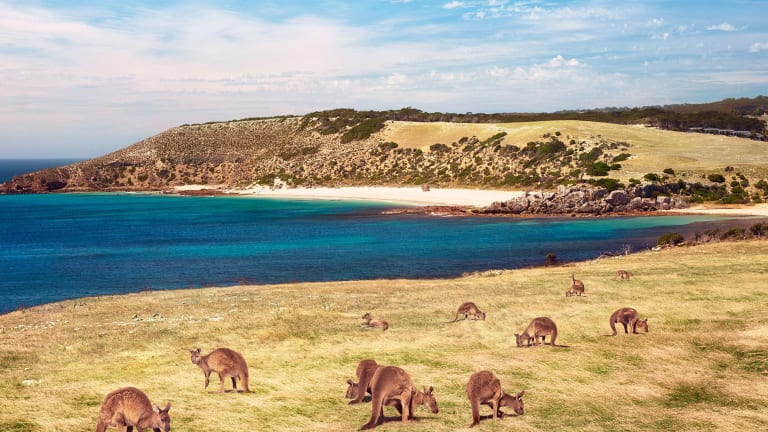 SI Swimsuit 2019 Destinations: Kangaroo Island, South Australia