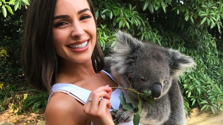Hold a Koala at Kangaroo Island Wildlife Park