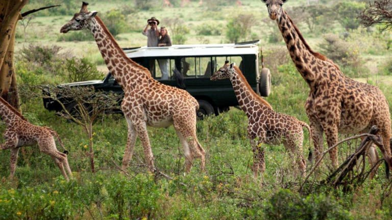 Have an African Adventure with Hemingways Expeditions