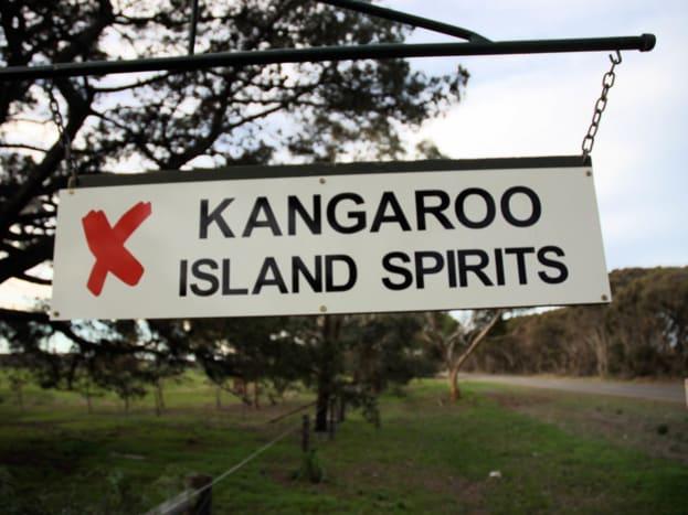 ki-spirits-4.jpg