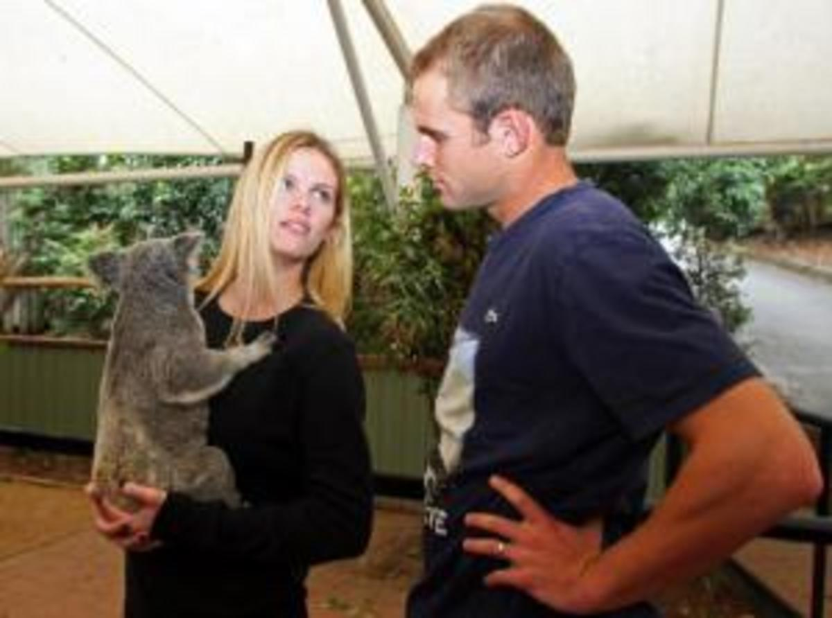 Andy Roddick & Brooklyn Decker Visit Koala Sanctuary