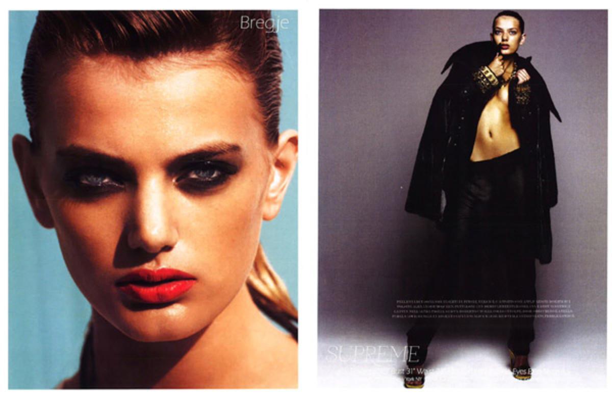 bregje-model-card3