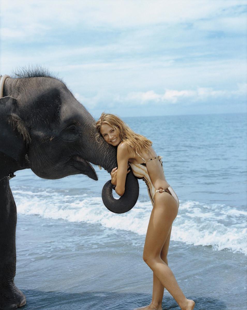 animals-heidi-elephant.jpg