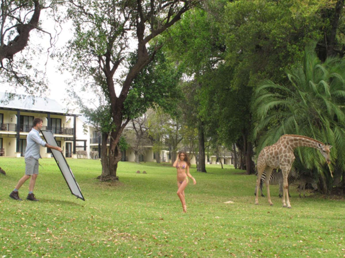 animals-irina-giraffe.jpg