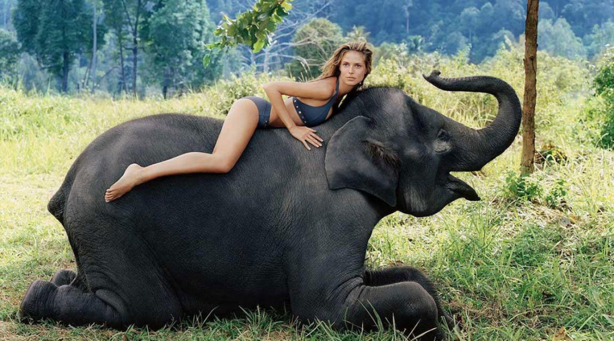 heidi-klum-elephant.jpg
