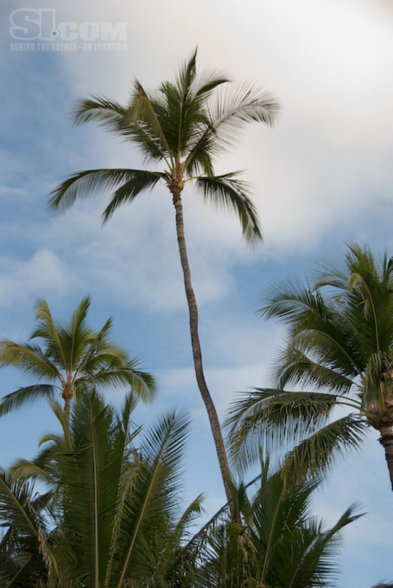 08_hawaii_14.jpg