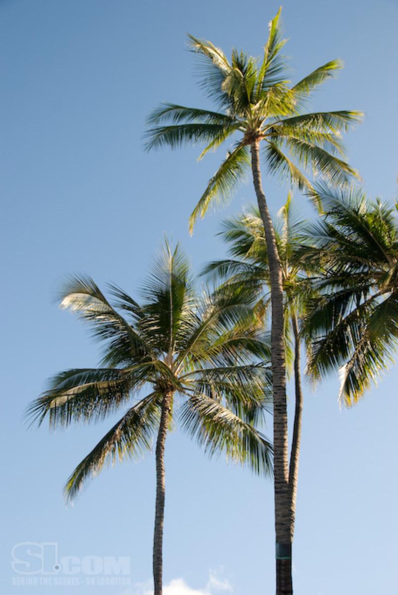 08_hawaii_12.jpg
