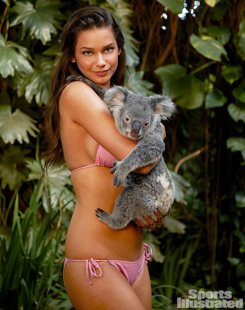 2012-Michelle-Vawer-koala-078075958.jpg